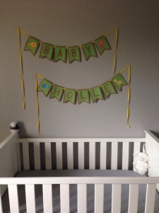 Heidi made these cute flags for our baby shower in Ohio!