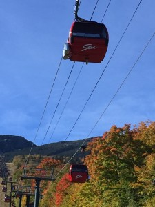 It's always neat to see other ski areas. We'd love to ski Stowe in the winter!