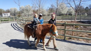 Tyler rode a pony like a pint-sized cowboy.