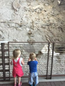 Future paleontologists?